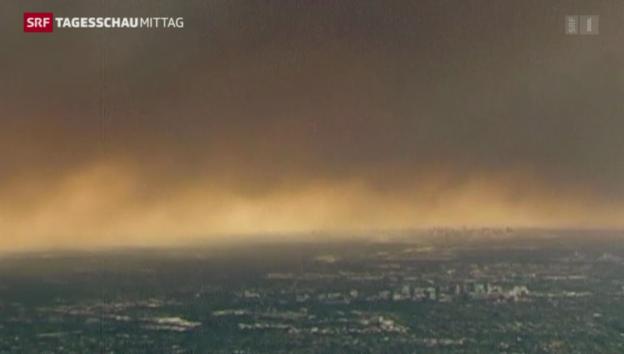 Video «Waldbrände wüten in Australien» abspielen