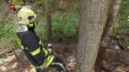 Video «Waldbrandgefahr - Feuerverbot» abspielen