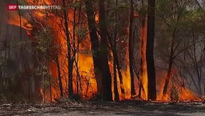 Video «Weitere Brände in Australien» abspielen