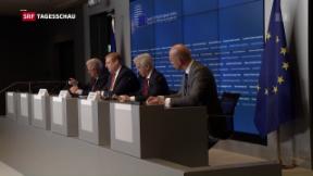 Video «EU-Innenminister einig über Verschärfung des Waffenrechts» abspielen