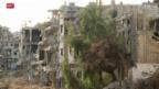 Video «Rückkehr nach Homs» abspielen