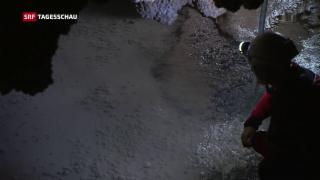 Video «Schweizer Höhlenretter fiebert mit» abspielen