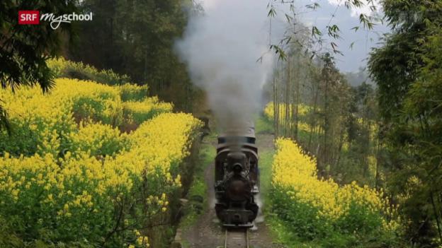 Video «Little Train – die kleine Bahn von Sezuan» abspielen