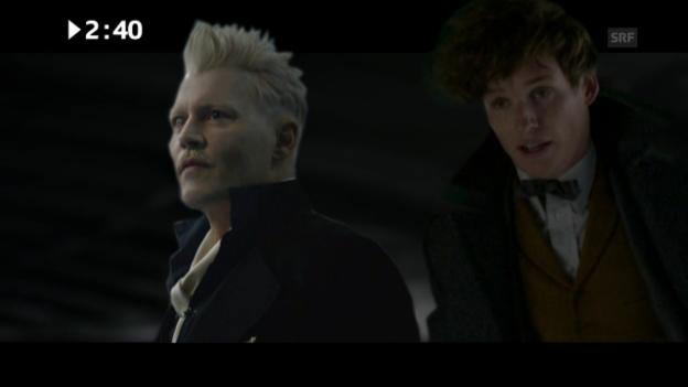 Video «Kinostart diese Woche: «Fantastic Beasts: The Crimes of Grindelwald»» abspielen