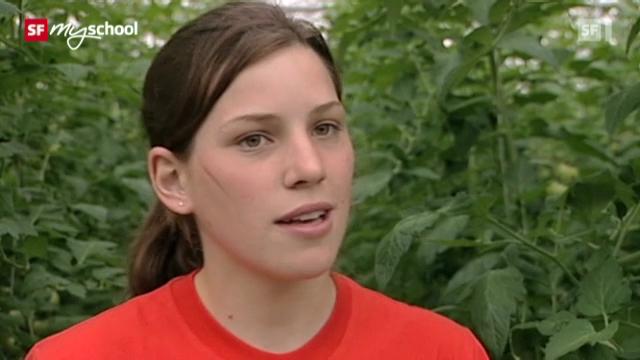 Berufsbild: Gemüsegärtnerin EFZ