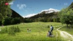 Video «Blumenwiese statt Strassenlärm für Airolo» abspielen