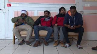 Video «FOKUS: Neuanfang für Flüchtlinge» abspielen