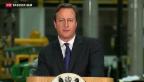 Video «Cameron nennt Bedingungen für Verbleib in der EU» abspielen