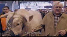 Video ««Saint Amour» (Trailer)» abspielen