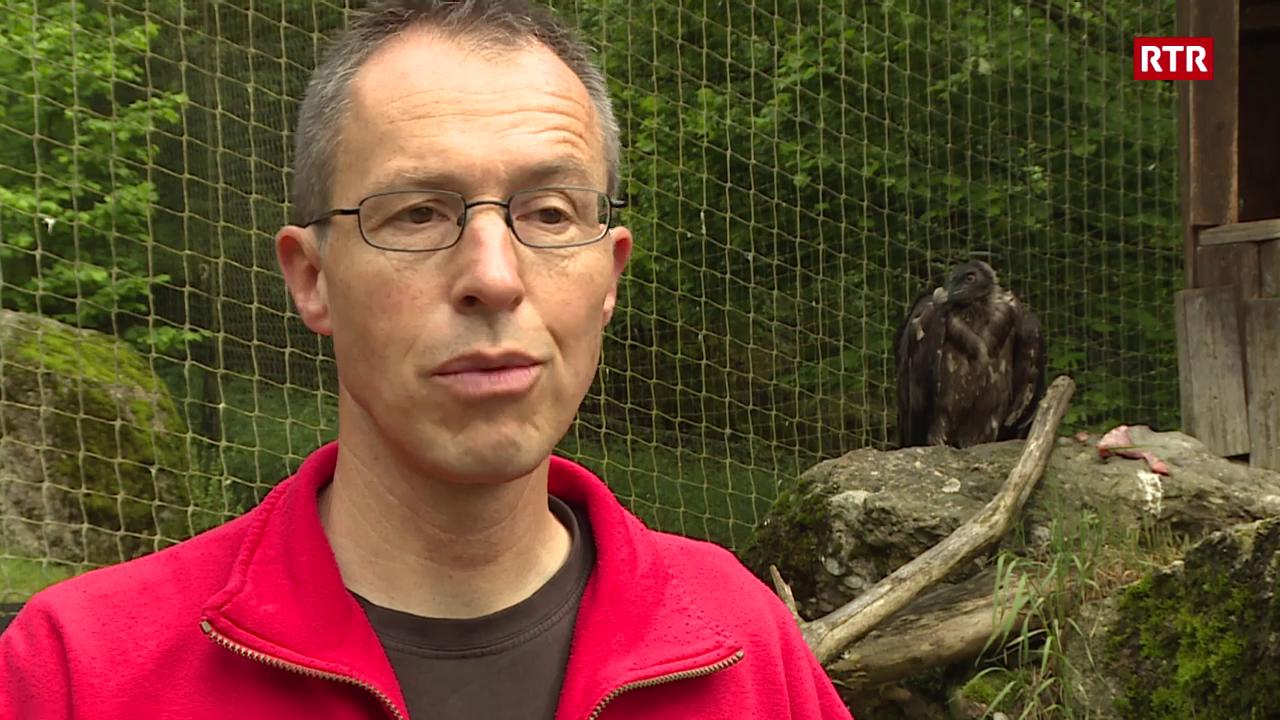 Martin Wehrle - il tschess barbet na è betg prighulus