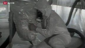 Video «Wegweisendes Asbest-Urteil» abspielen
