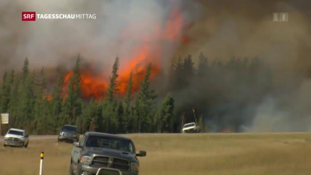 Video «Waldbrand in Kanada wütet weiter» abspielen