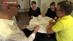 Video «Gewalt- und Sexualstraftäter: neues Vollzugsmodell positiv getestet» abspielen