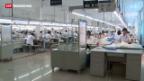 Video «Chinas Wirtschaft hofft auf Europa» abspielen