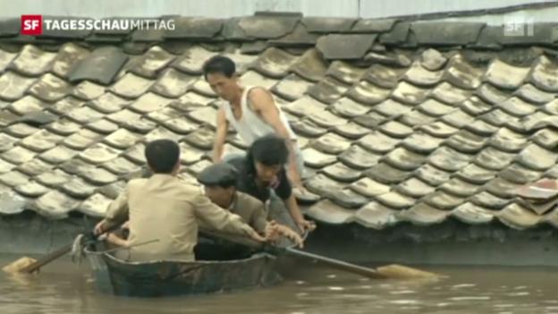 Video «Nordkorea droht Hungersnot» abspielen