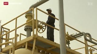 Video «Preiskampf ums Öl » abspielen