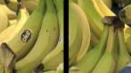 Video ««ECO kompakt»: Bananenstreit» abspielen