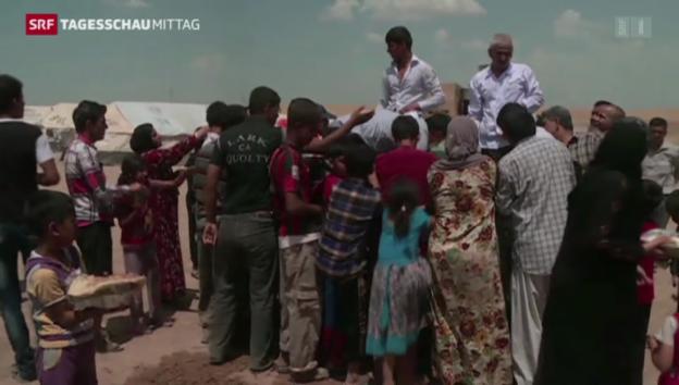 Video «Weltflüchtlingstag: 50 Millionen auf der Flucht» abspielen