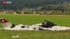 Video «Tödlicher Absturz mit selbst gebautem Flugzeug» abspielen