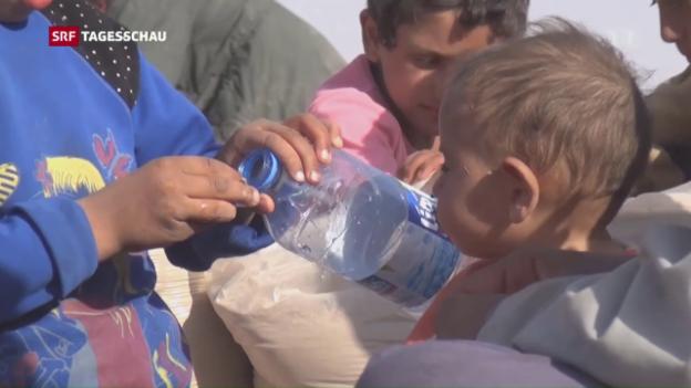 Video «Mossul weiter umkämpft» abspielen