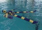 Video «Der Schwimmroboter» abspielen