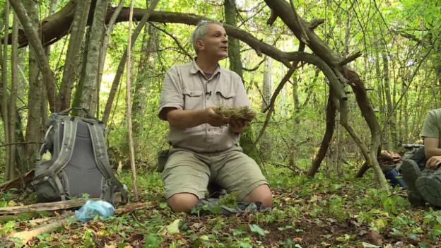 Video «Klopapier: Natur pur» abspielen