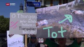 Video «Kanton Thurgau räumt Fehler ein» abspielen