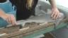 Video ««Einstein» unter Haien - Teil 2» abspielen