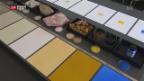 Video «Die Farben des Aargaus» abspielen