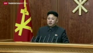 Video «Kim Jong Un meldet sich zu Wort» abspielen