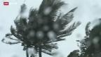 Video «Taifun Haiyan» abspielen