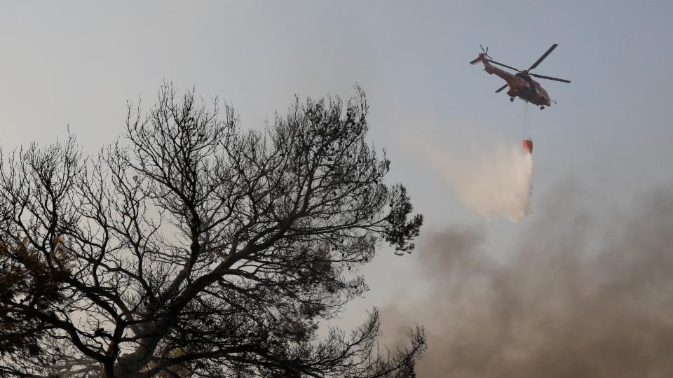 So löschen Profis einen Waldbrand