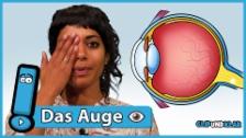 Link öffnet eine Lightbox. Video Wie ist dein Auge aufgebaut und wie kannst du damit sehen? abspielen