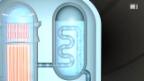 Video «Reaktortypen» abspielen