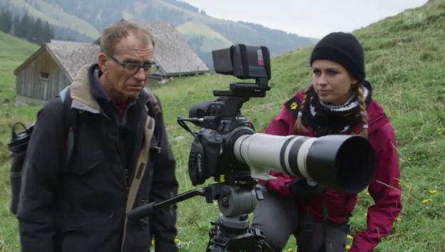 Video «Tiere in den Alpen» abspielen