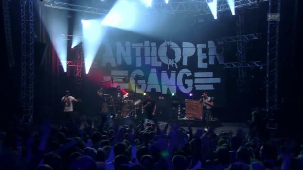 Video «Antilopen Gang - «Verliebt»» abspielen