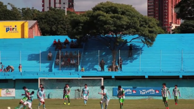 Video «Baum in Stadiontribüne (sntv)» abspielen