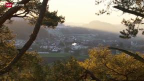 Video «Nach Drama in Flaach: Mitsprache bei Kinderschutz-Entscheiden» abspielen