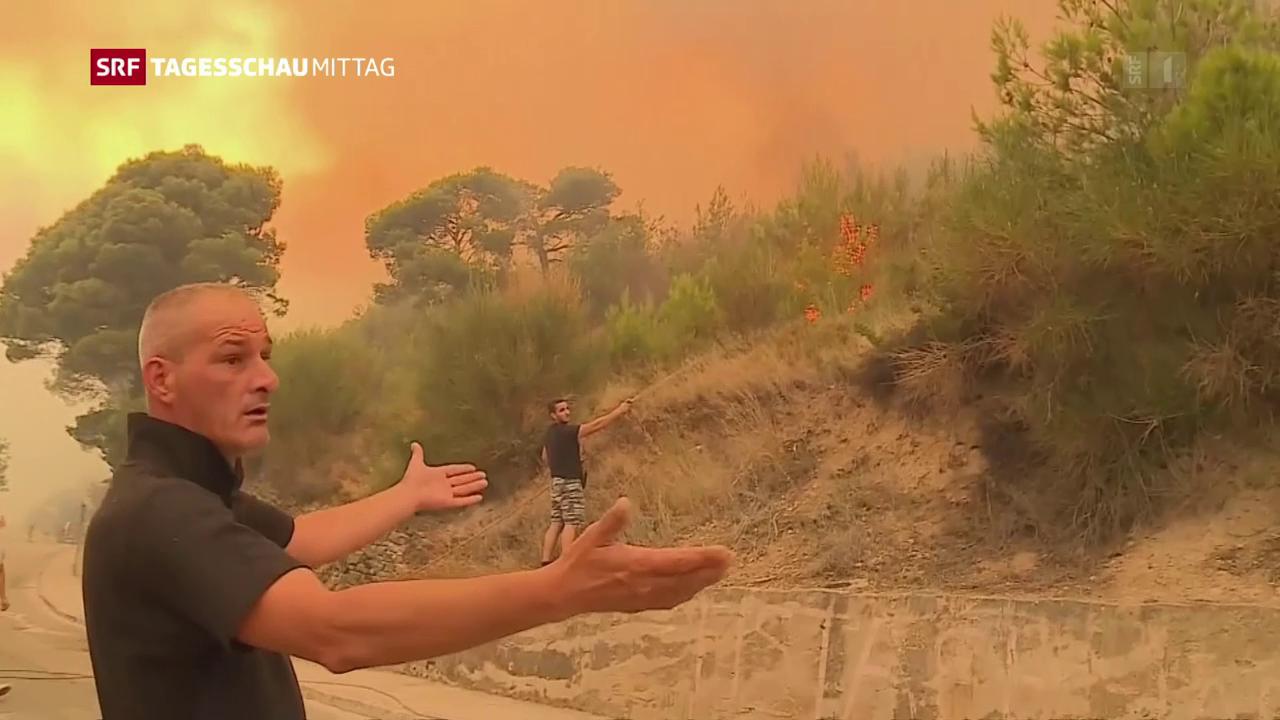 Waldbrände Europa