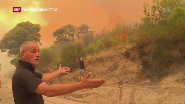 Video «Waldbrände Europa» abspielen