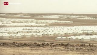 Video «Syrische Flüchtlinge: Seltsame Einigkeit bei Politikern » abspielen