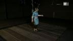 Video «Cyberwalk durch Pompeij» abspielen