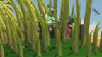 Video «Aufblasbare Grashalme und fliegende Stuntmen: Impressionen von den Proben» abspielen