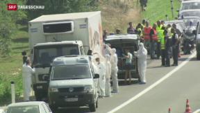 Video «Dutzende Leichen auf Schlepper-LKW in Österreich gefunden» abspielen