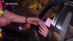 Video «Illegale Grenzübertritte» abspielen