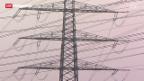 Video «Swissgrid drängt auf kürzere Verfahren bei Stromprojekten» abspielen
