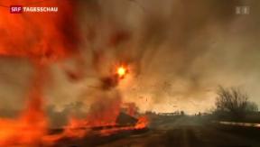 Video «Streit um Waffenabzug in der Ukraine» abspielen