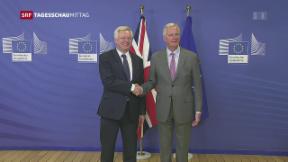 Video «Brexit: Die Zeit drängt» abspielen