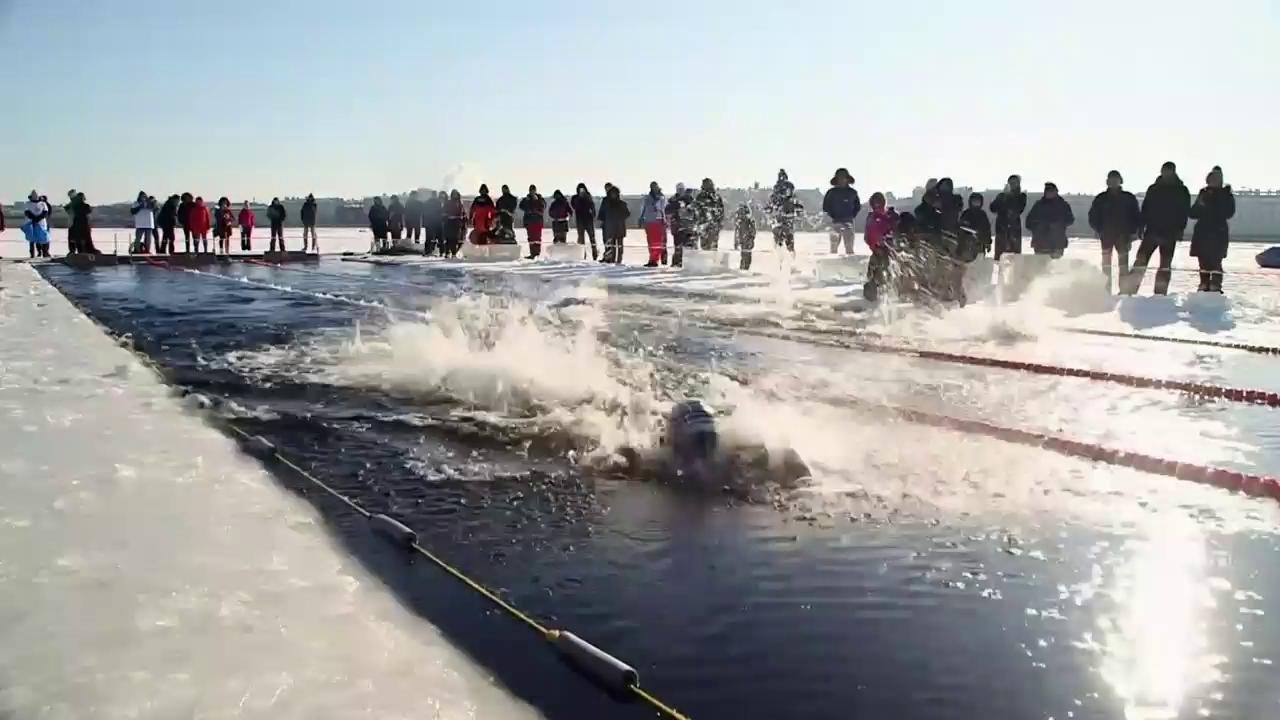 Eisschwimmen in der Neva