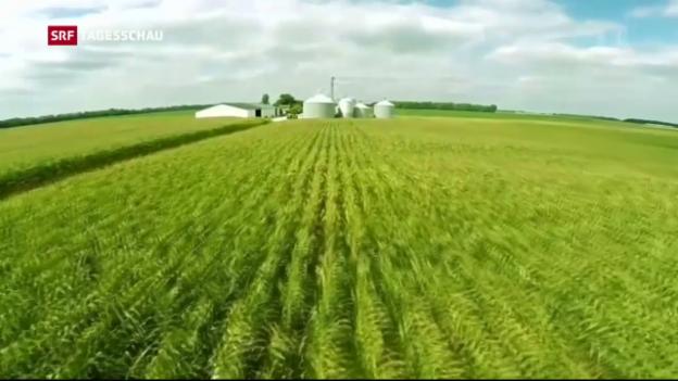 Video «Tagesschau vom 14.09.2016, 19:30» abspielen